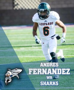 Andres Fernandez is moving on to the Hungarian League